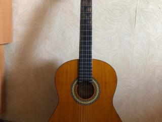 Продам гитару Euphony