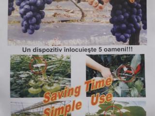 Инструмент для подвязки виноградника,