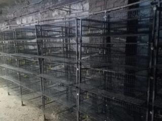 Клетки для перепелов или цыплят