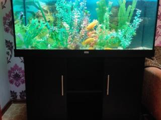 Продам 6 аквариумов, внешние фильтры и другое!