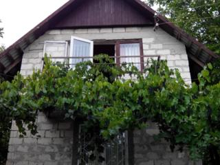 Продам оформленный загородный дом с участком