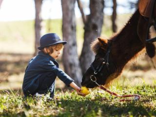 Детская фотосессия с пони!