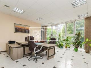 Se dă în chirie oficiu in sectorul Râșcani, prima linie, str. Alecu ..