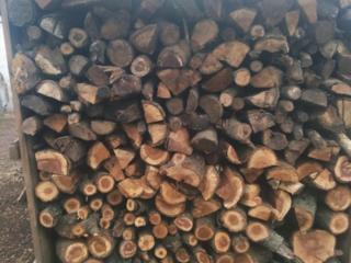 Продам дрова фруктовых деревьев