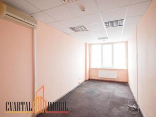 Spre chirie oficii, recent după reparație, amplasate pe bd. Moscovei,