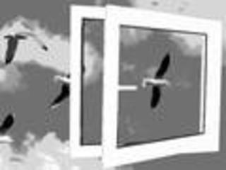 Металлопластиковые окна, двери. Балконное застекление. Балконные металлокаркасы.Профили: