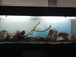Изготовим аквариумы и террариумы на заказ по индивидуальным размерам