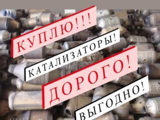 Куплю катализаторы Дорого!!!
