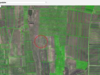 Vînd teren agricol 2,29 ha în Sîngera