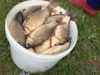 Рыбалка! La pescuit! Ne aflam 10km de orasul Riscani s. Moseni