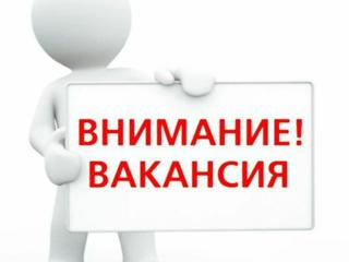 Требуются сварщики MIG/MAG на работу в Польшу