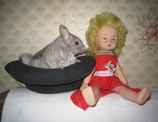 """Кукла, старин. оригинал. патефон """"Н. К. М. ГЛАВШИРПОТРЕБ"""" 1937-1938 г."""