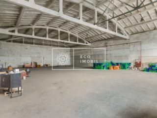 Vânzare spațiu industrial pe str. Uzinelor, sec. Ciocani. ...
