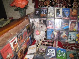 Аудиокассеты и винил. муз. диски ин-х и Совет-х исполнителей (сб-к 2).