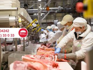 На завод по переработке свинины и курицы нужны рабочие. Польша.