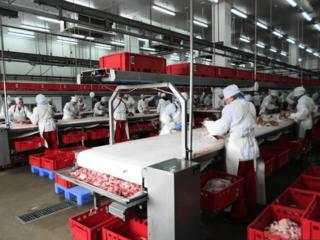 Завод по производству кормов для домашних животных.