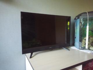 Телевизор Skyworth 32 дюйма (торг)
