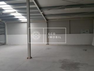 Se oferă spre chirie spațiu industrial în sectorul Ciocana, str. ...
