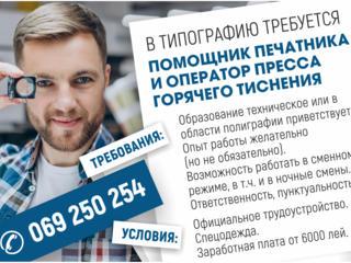 ТИПОГРАФИИ - помощник печатника и оператор пресса горячего тиснения