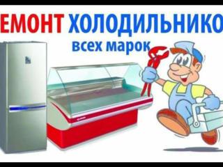 Ремонт холодильников. Всех типов. Гарантия!