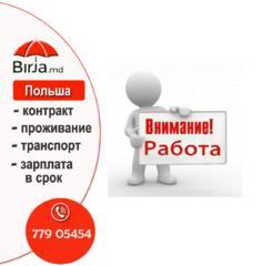 Работа с официальным оформлением в Польшу, заводы.