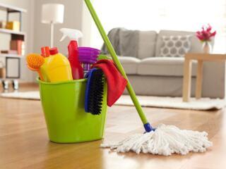 Doamnele cu experiența în domeniul curățeniei