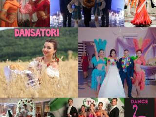 Dansatori la nunti si cumatrii. Show ballet Flamingo