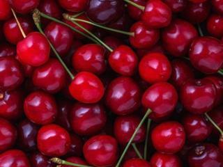 Срочно требуются люди на сбор вишни!