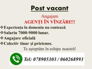 URGENT! Agent in vinzari cu automobil personal. Salariu 7000-9000 lei.