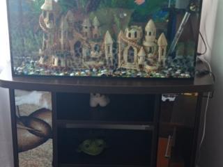 Продам аквариум на 150л + тумба