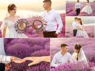 ОКТЯБРЬ! НОЯБРЬ! Фото и видео свадьбы! ЕСТЬ ДАТЫ!