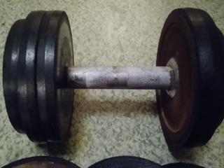 Гантель разборная 12 кг