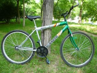2 biciclete. Una cu o viteza. Alta cu multe. Totul functioneaza.
