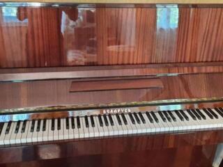 Пианино Беларусь (2х педальное)