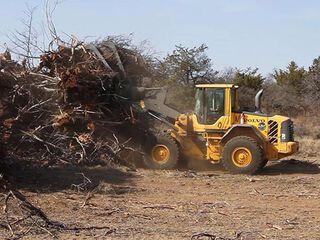 Очистка дачных участков планировка участков выкорчёвка срез деревьев пеней.