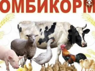 Корма для животних та птахів
