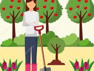Lucrător la grădina cu cazare
