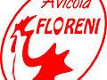 Предприятие Floreni SRL закупает зерновые