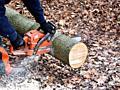 Пилю дрова выезд на место.
