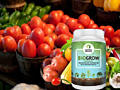 Biogrow plus – биоактиватор роста рассады и растений