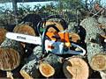 Пилю дрова! Распиловка дров и деревьев! Бензопилой! Колка дров