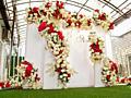 Фото - зона - Свадьбы, Куматрии, Дни рождения