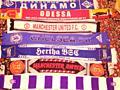 Шарфы футбольных клубов, Коллекция. Спортивные аксессуары