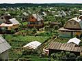 Сниму дачу на лето в пригороде Кишинева