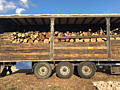 Продам дрова твердых пород и фруктовые. Есть брикет Пини Кей дубовый.