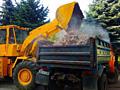 Фронтальный погрузчик экскаватор гидромолот, очистка участков территорий вывоз мусора планировка