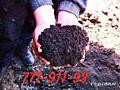 Чернозём (Плодородный грунт)