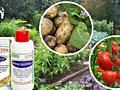 Средства защиты растений. Семена.