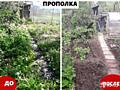 Садово-огородные работы.