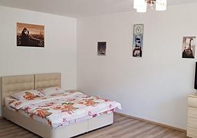 Квартира в Бельцах - посуточно (350 лей)